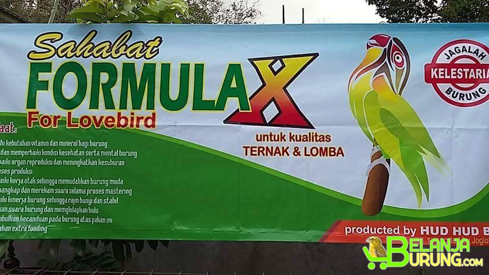 formula x pakan burung lomba dan ternak   belanjaburung